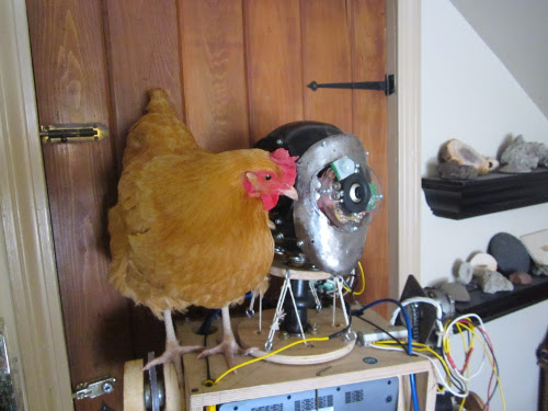 Robot with chicken